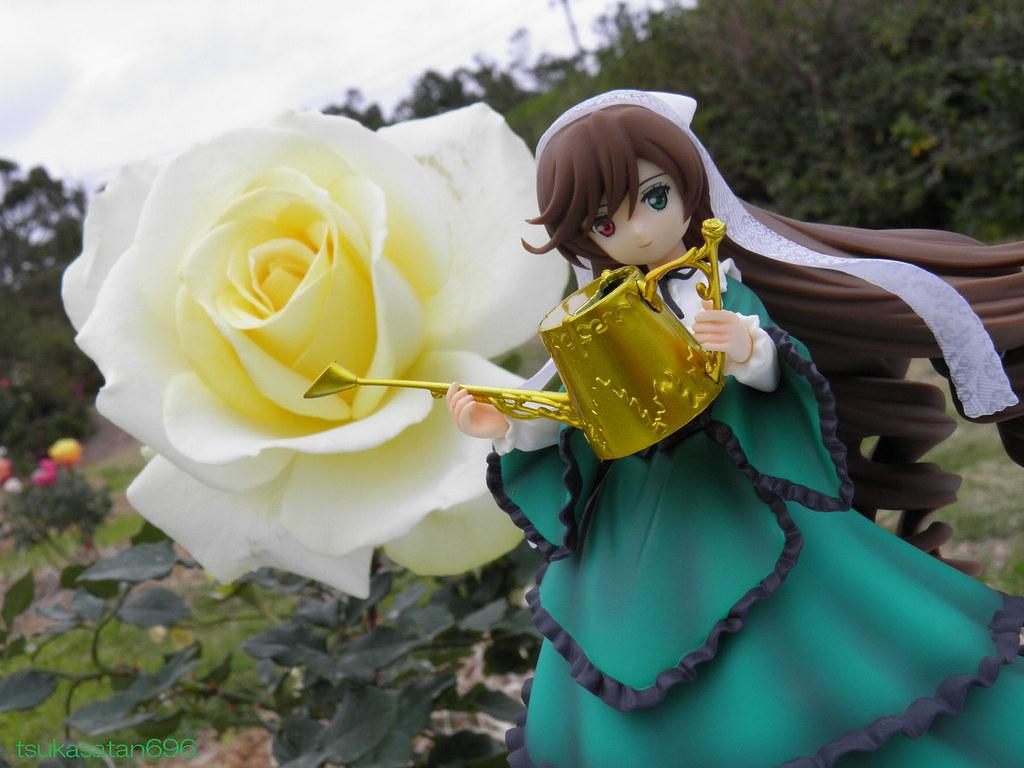 翠星石 Suiseiseki From Rozen Maiden At Okinawa Kaguyahime