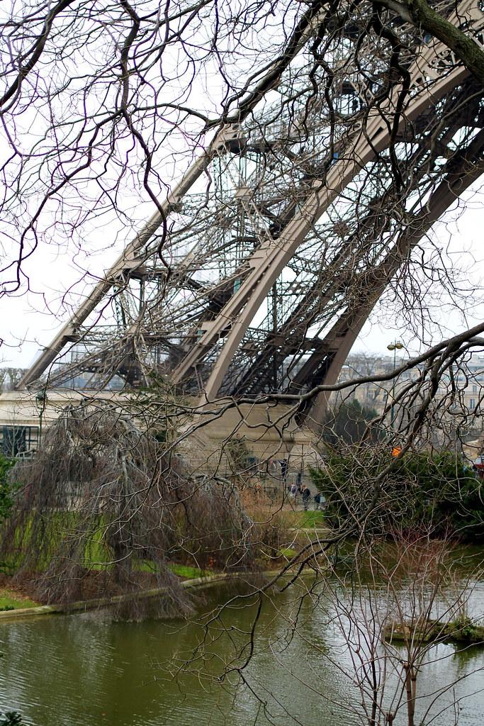 Eiffel Tower (7)