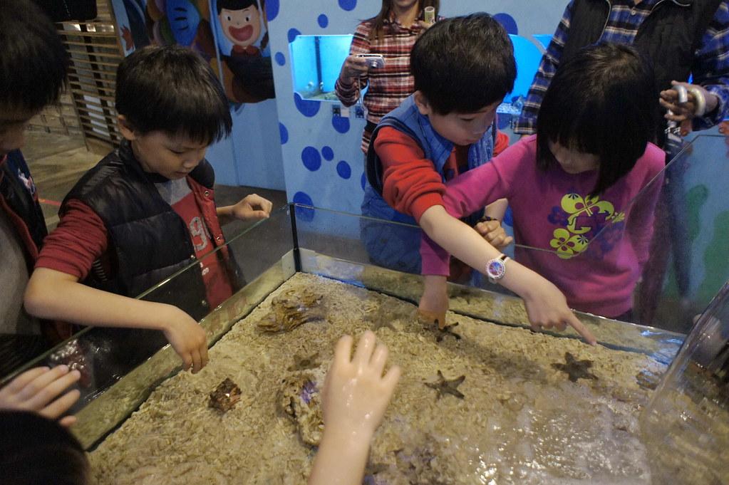七星潭柴魚博物館 (13)