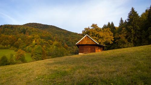 autumn sunlight light morning day partlycloudy tamoadamo