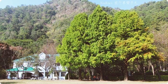 清境觀光巴士 奧萬大森林遊樂區 賞楓0-