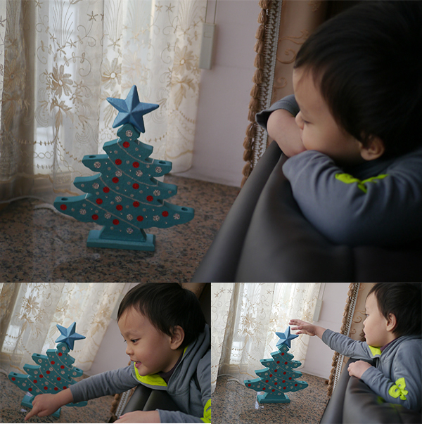 2014 X'mas Tree (16)
