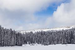 Arch Slough Snowshoe (12-20-14)