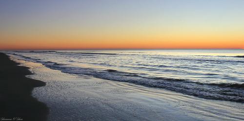 sea sky seascape beach nature sunrise landscape sand surf southcarolina atlanticocean hiltonheadisland colignybeach canoneosrebelt2i shannonroseoshea