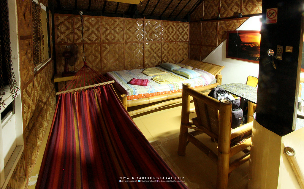 backpackers lodge where to stay in moalboal cebu