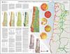Landslide map