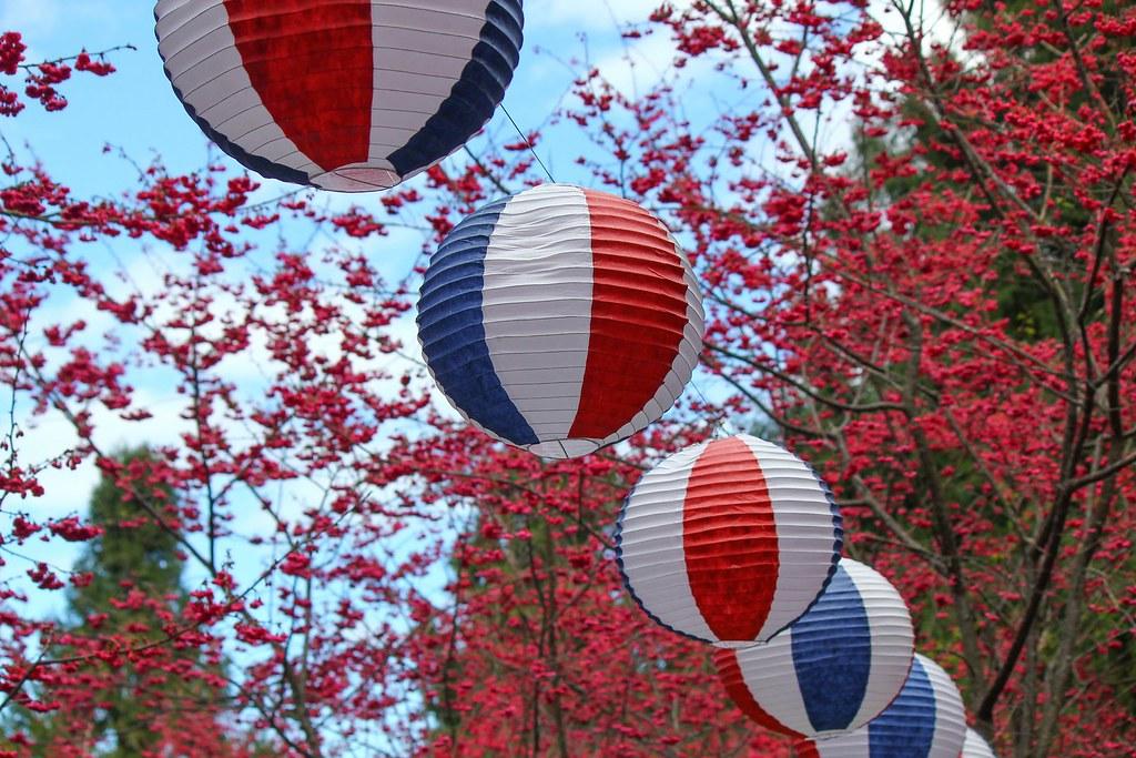 九族櫻花祭 (161)