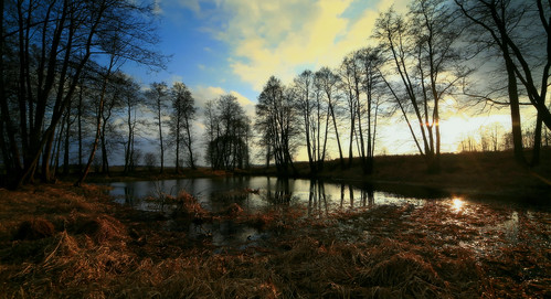 trees winter light sunset lake water canon landscape mirror scenery drohiczyn cesarz marcelxyz