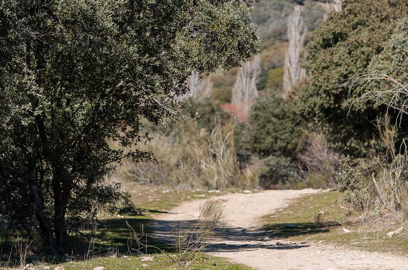Ruta a la Cascada del Hervidero