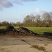 Small photo of Field with tires and fodder beets