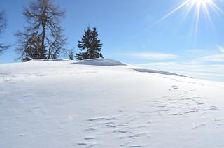 la neve, il sole, il silenzio...