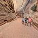 Aaron Goldtooth, Jonathan Bailey, and Alan Cressler, The Narrows, Grand Wash, Capitol Reef National Park, Wayne County, Utah 1 by Alan Cressler