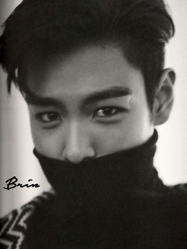 fromtop-scans-by-brin (53)