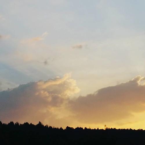 Terra di Lucania.
