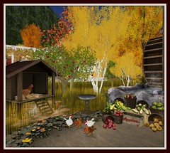Falls Cabin in the Woods | Chicken