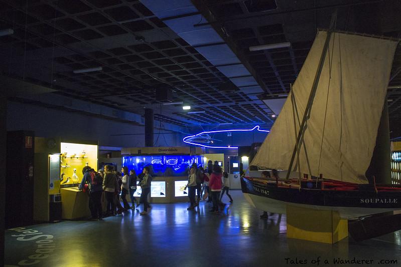 A CORUÑA - Aquarium Finisterrae