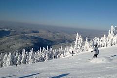 Rokytnice nad Jizerou - pohádkové lyžování