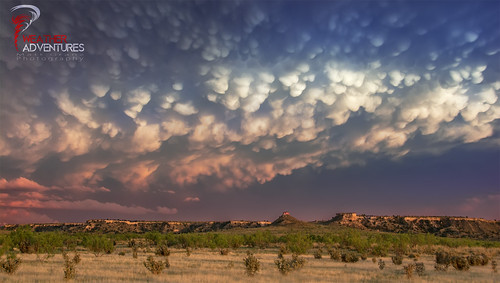 Mammatus Before Sunset