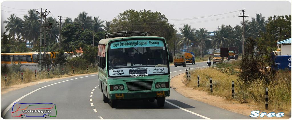 TN-38N-2782 of Sungam 1 Depot Route Coimbatore - Tiruppur via Sulur, Palladam.