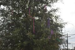 015 Bead Tree