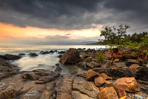 sunrise weed rocks mangrove portdouglas carlee northernqueensland brianspicer canon7d australiatrip2011