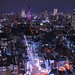 Tokyo Tower Full Moon Diamond Veil by t-hibi