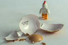 Eggscape 2