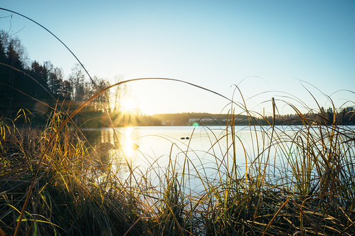 sky sun lake reflection nature water grass forest sunrise finland landscape sony calm blade kuopio bladeofgrass vsco northernsavonia sonynex sel1855 sonynex5n vscofilm