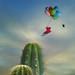 love is like a flight by Kasia Derwinska