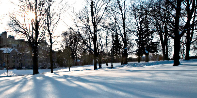 """There's still a lot of winter to come on Queen's campus. We've had record-breaking temperatures, but the """"snowscapes"""" are beautiful!"""