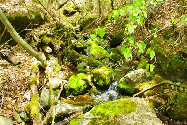 2014-05-06_02618_九州登山旅行.jpg