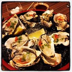 Yum Yum Oysters