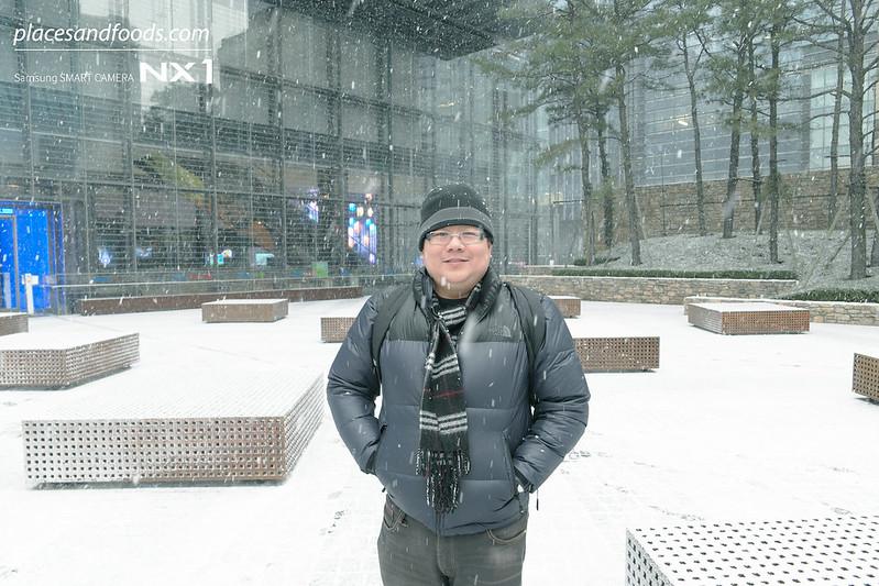 seoul snowing wilson ng