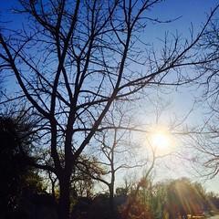 25 February 2015 #sunset #samespotforayear