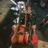 Incordofono mediterraneo misto a 24 corde #guitar