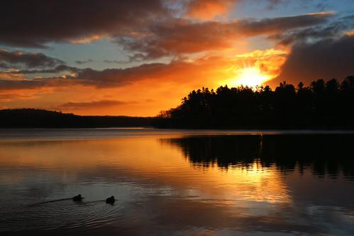 sky lake clouds sunrise reflections himmel skyer sø noplacelikehome silkeborg spejling solopgang skyporn søhøjlandet earthporn skallervig