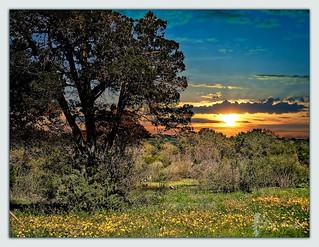 southtexas sunset