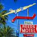 reed's motel by alphabet soup studio / lenore locken