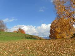 niciodată toamna nu fu mai frumoasă/autumn was never this beautiful
