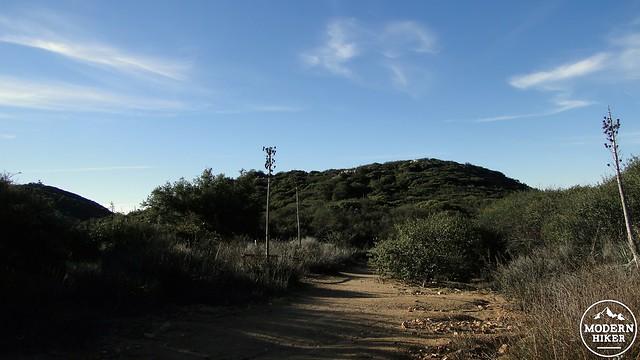 sitton-peak 8