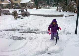 Rosie helping shovel the driveway