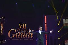 gala VII Premis Gaudí (23)