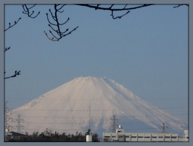 Mt. Fuji has its snowy mountain peak in Jan. 2015.