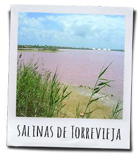Salinas de Torrevieja, een zoutmeer met een intense rose kleur