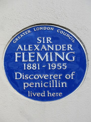 Photo of Alexander Fleming blue plaque