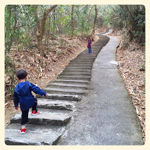 Follow me! #family #taiwan #nantou #台灣 #南投