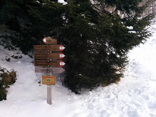 Abkürzung durch den Wald oder weiter auf dem Forstweg?