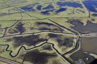 Beighton Marshes aerial