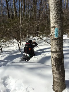 Amazing weekend snowshoeing on the Appalachian Train on the Connecticut / Massachusetts border