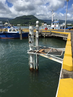 Apia tide pole